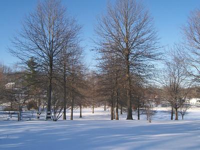 2010 01 29 Snow LR