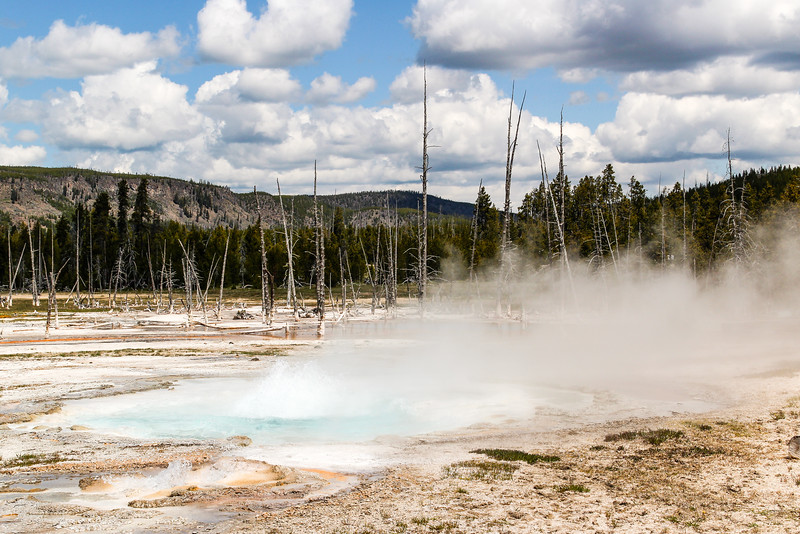 Spouter Geyser - Yellowstone National Park
