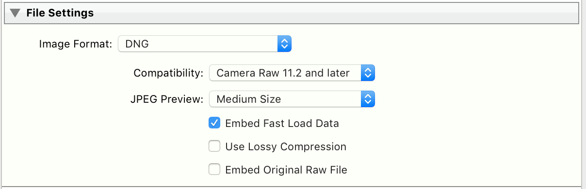 File Settings - DNG