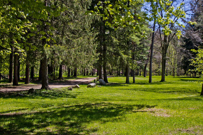 Richfield County Park in Michigan 43