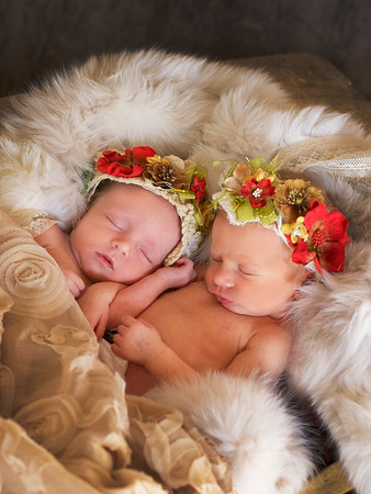 Newborn Twins:   Adele and Alexandra's Portraits