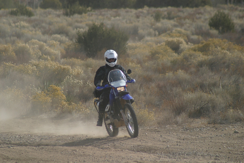 DS10,Dual Sport,Motorcycle