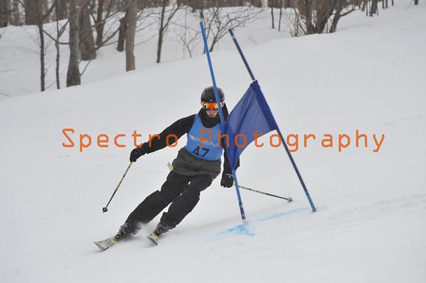 OFSAA Alpine 2014 Level I GS Men