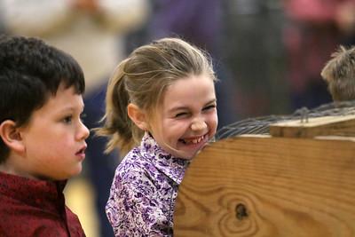 2019 Llano County Junior Livestock Show