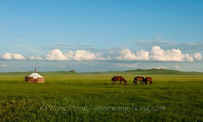 Inner Mongolia 内蒙