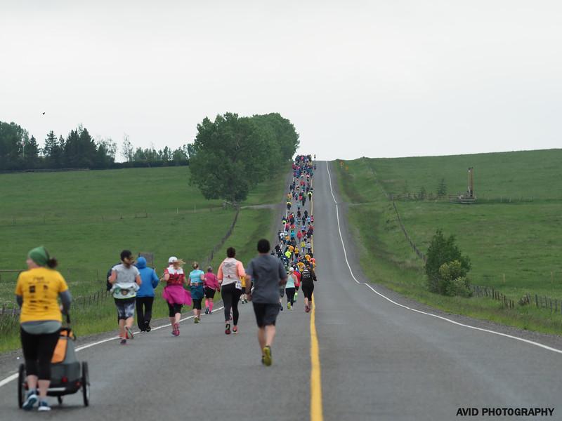 Millarville Marathon 2018 (334).jpg