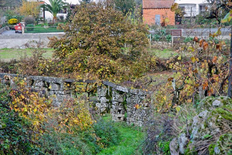 PR6 trilho medieval - 20091122 -  8892.jpg