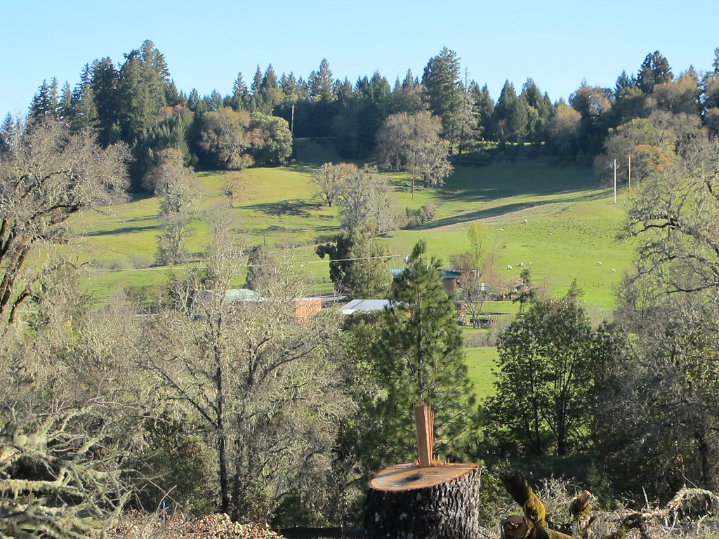 . Photo taken from a ridge between Highway 101 and the valley. Much of this ridge will be removed for the southern bypass interchange.