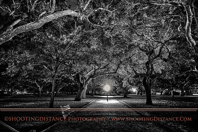 White Point Gardens at night, Charleston, SC harbor