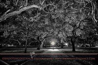White Point Gardens at night, Charleston, SC harbor