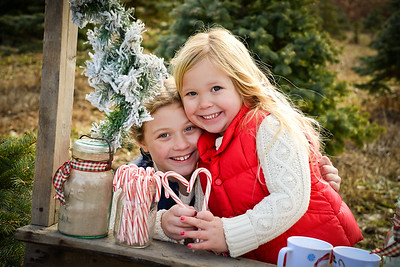 Brunner Holiday Mini 2016