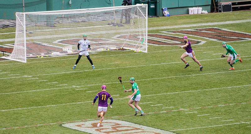 2018 Limerick vs Wexford -_8503675.jpg