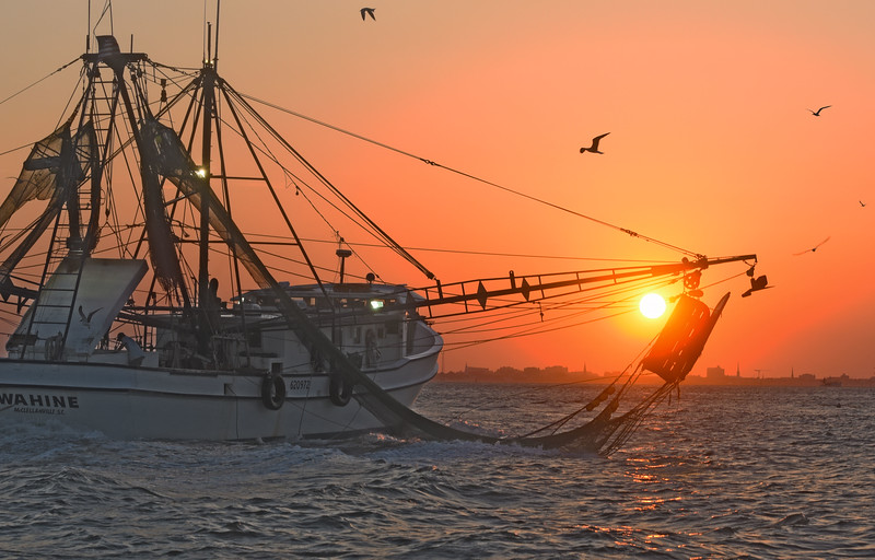 MMGINC Shrimp Boat Charleston Harbor_3.jpg
