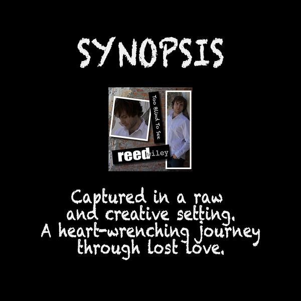 TooBlind SYNOPSIS.jpg