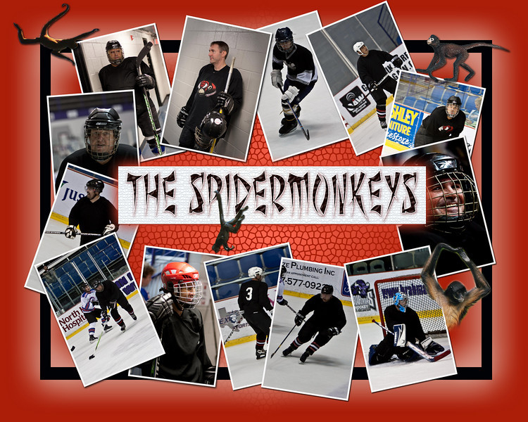 spidermonkeyteam.jpg