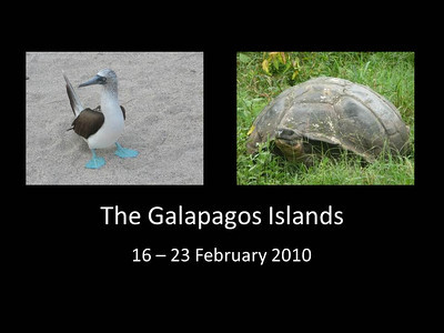 2010 Galapagos Islands