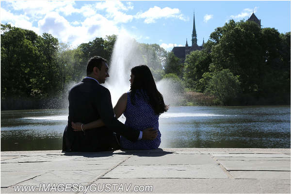 engagement-vidhi-in-the-usa.jpg