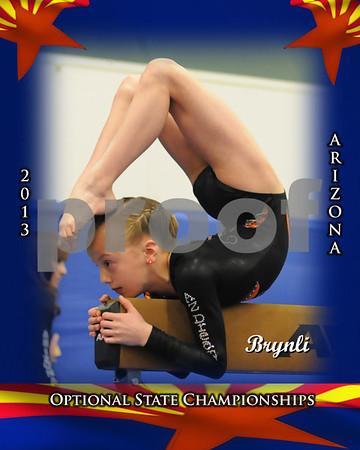 2012-13 Gymnastics Meets