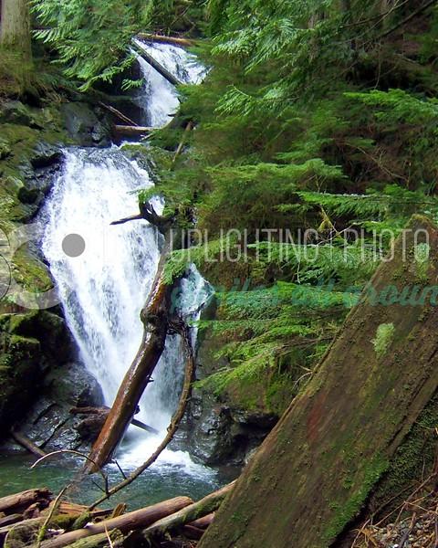 Forest Waterfall_batch_batch.jpg