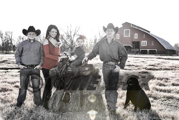 Brice Family 2016
