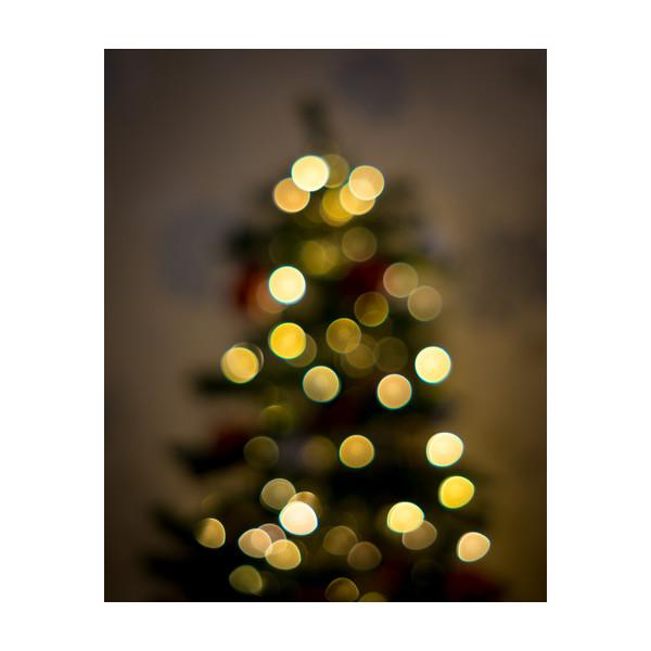 359_Christmas001_10x10.jpg
