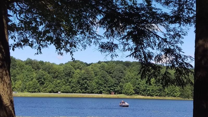 Summer Day at Hemlock Lake