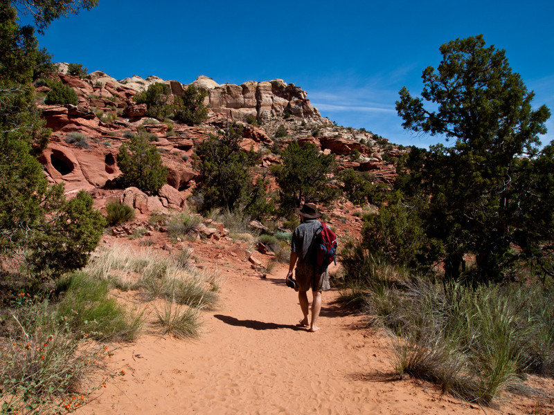 5/28 - Heading out on the trail to Lower Calf Creek Falls