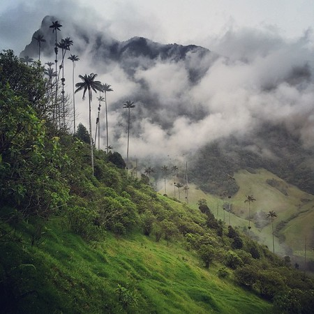 Instagramming Colombia