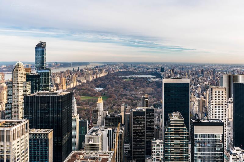 Central park from TOR.jpg