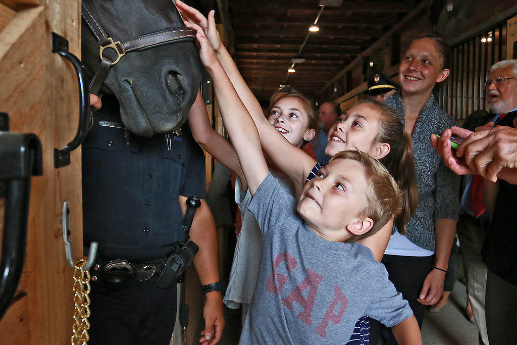 """. Worcester County Sheriff Lew Evangelidis celebrated the official ribbon cutting and dedication of the Worcester Mounted Police Unit Horse Barn and Stables. The recently retro-fitted barn will be named after former Sheriff John \""""Mike\"""" Flynn who was a former member of the Fitchburg Police Department. after the ceremony everyone got to tour the barn. Siblings BridgetHast, 11, Annie, 9, and Adam, 6, go to pet Midnight, Officer David Rojas\'s horse, as they toured the barn. SENTINEL & ENTERPRISE/JOHN LOVE"""