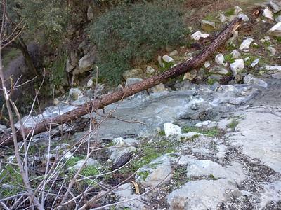 2019.2.17 Sturtevant Falls Hike