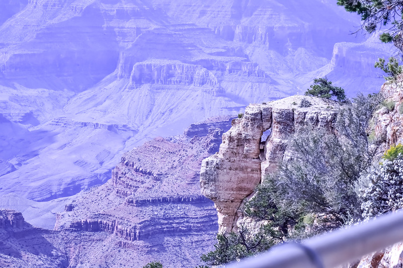 2019 Grand Canyon-273.jpg