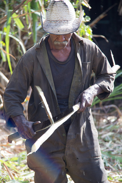 Working the sugar cane fields with a machete.