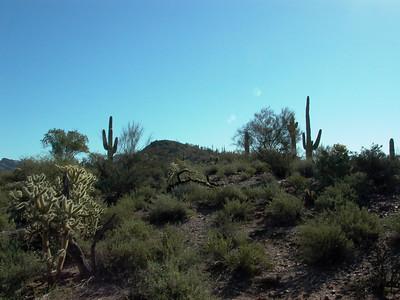 Arizona - March 2007