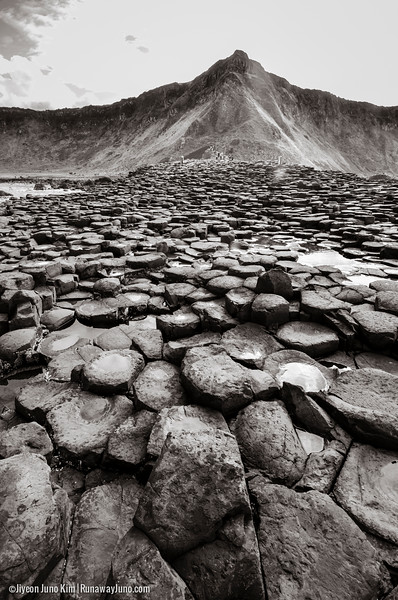 Northern Ireland-Giants Causeway-8055.jpg