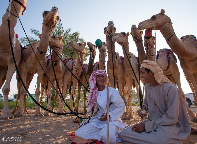Camel Race  (2).jpg