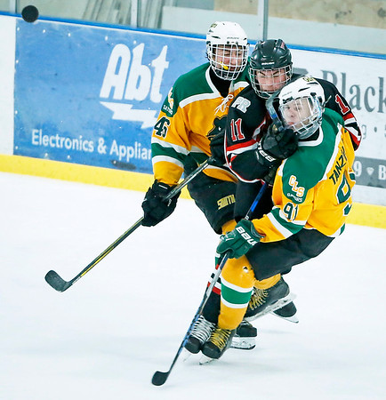 Hockey: Crystal Lake South vs. District 155