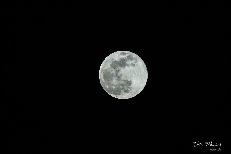 2019-02-19 Mond - 0U5A7415.jpg