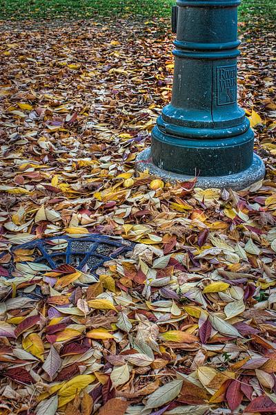 2010-10-11_MG_1299_300_301_302_303_tonemapped.jpg