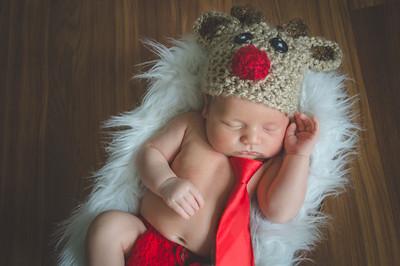 Newborn Knox - December 2017