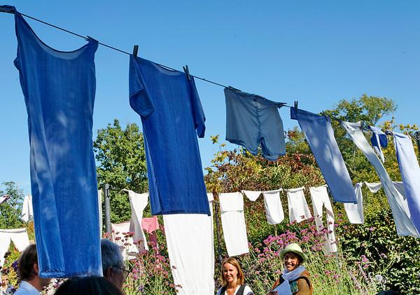 """2009 - Jardins de couleur - Festival des Jardins de Chaumont - Jardin """"Lessive en fleurs"""""""