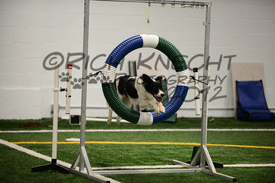 JAG AKC Agility Trial August 4-5