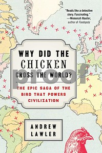 why-did-the-chicken-cross-the-world-is-a-whole-flock-of-fun