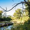 Walnut Creek bend-early September 2014-6073