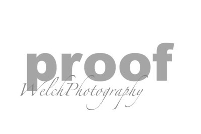 WelchPhotgraphy  watermarking
