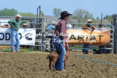 Goats 05-26-14