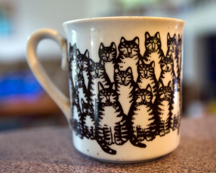 cat_cup.jpg