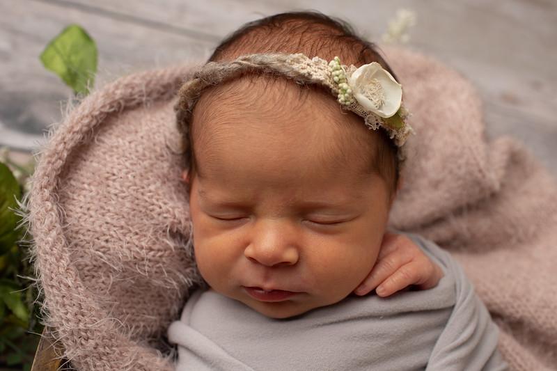 Baby Olivia Grace-7.jpg