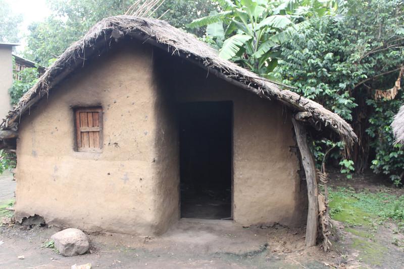 unusual Ari mud house