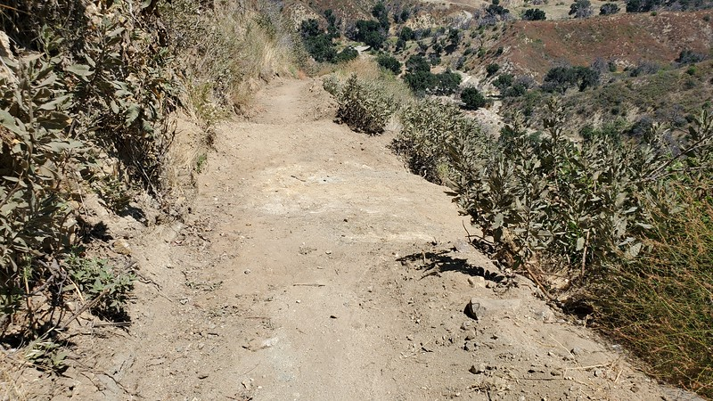 20190810058-Los Pinetos trailwork.jpg